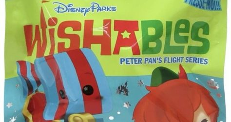 Peter Pan Disney Parks Wishables Mystery Bag